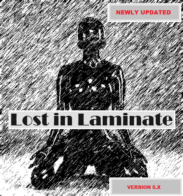 Lost in Laminate poster